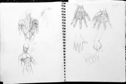 Anatomy studies by Luke.G