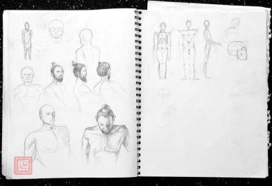 Anatomy studies Luke.G