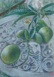 Mangoes by Luke.G